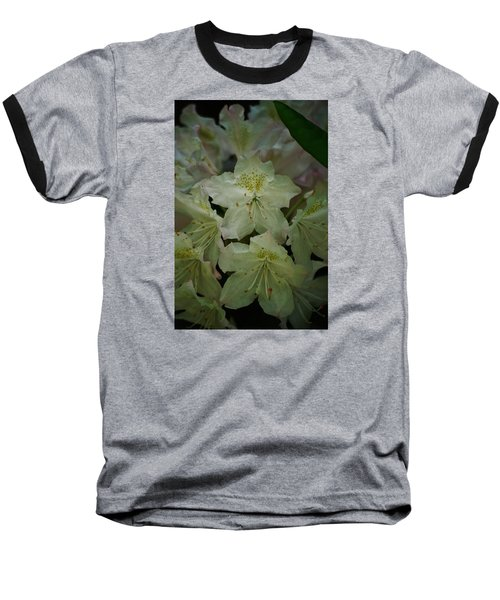 Baseball T-Shirt featuring the photograph Speckled In Gold by Ramona Whiteaker
