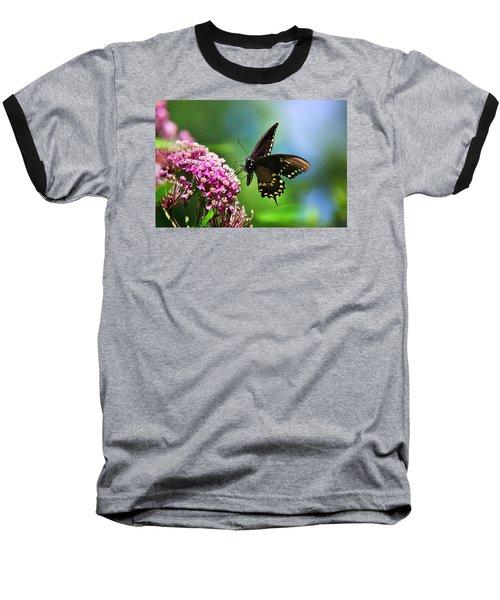 Spicebush Swallowtail Butterfly On Pink Flower Baseball T-Shirt