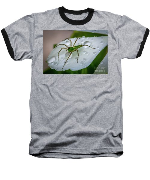 Spider And Flower Petal Baseball T-Shirt by Tom Claud