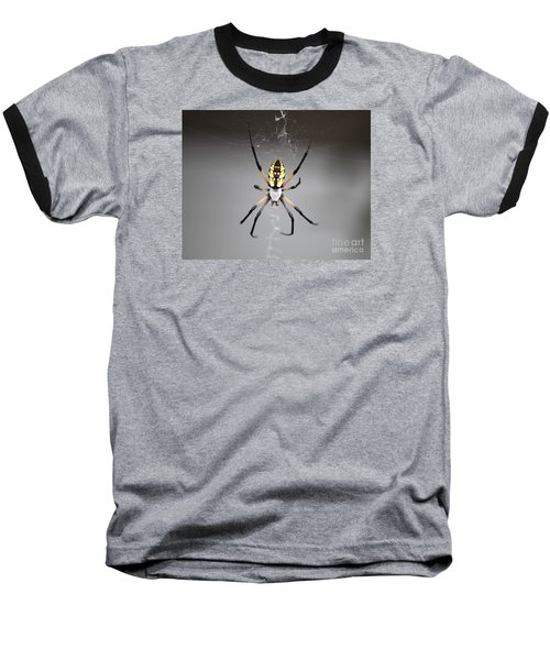 Spider Baseball T-Shirt