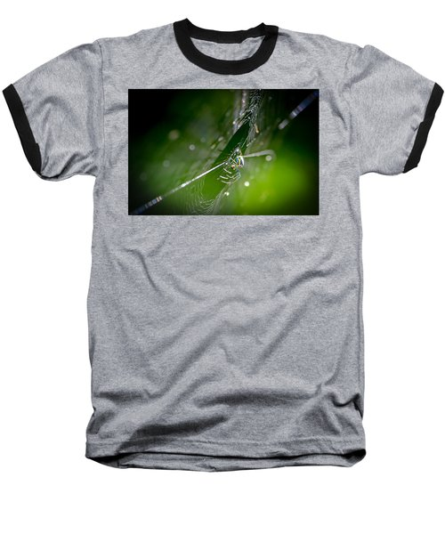 Spider Baseball T-Shirt by Craig Szymanski