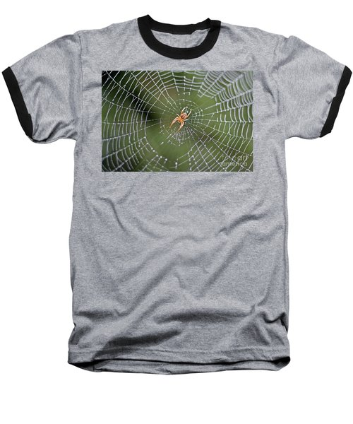 Spider In A Dew Covered Web Baseball T-Shirt