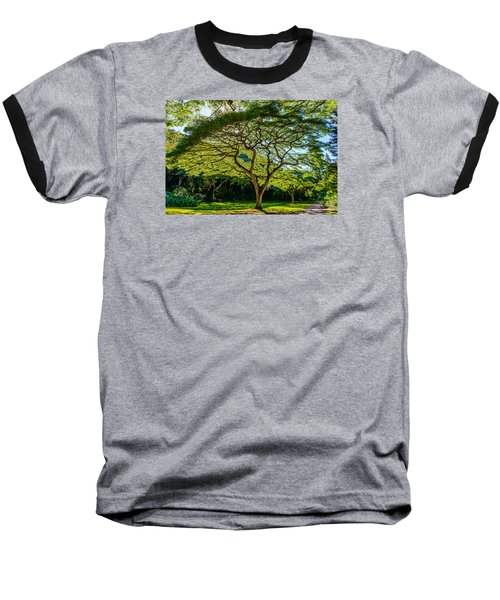 Spider Tree Baseball T-Shirt
