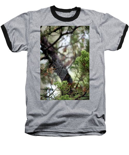 Spider Web In Tree Baseball T-Shirt
