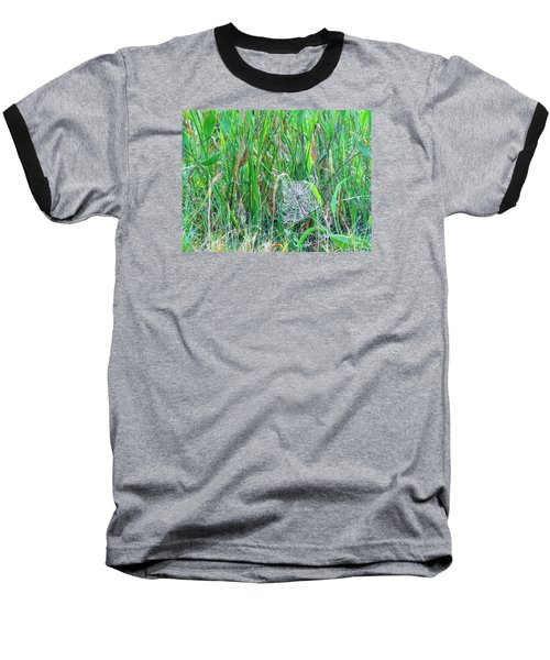 Baseball T-Shirt featuring the photograph Spider Web by Kay Gilley