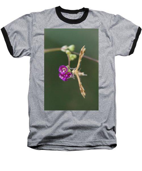 Spiderling Plume Moth On Wineflower Baseball T-Shirt
