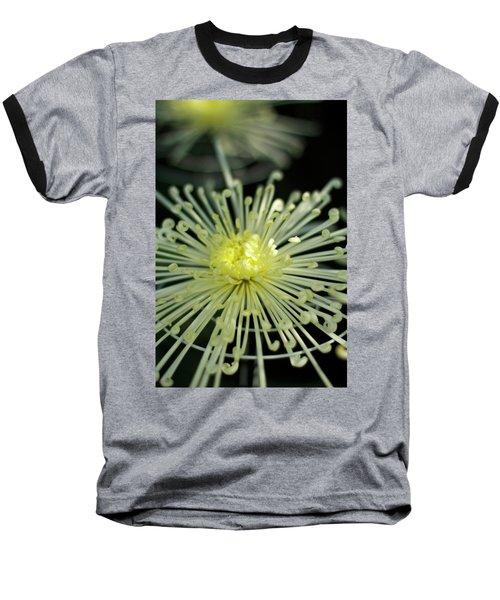Spiral Chryanth Baseball T-Shirt
