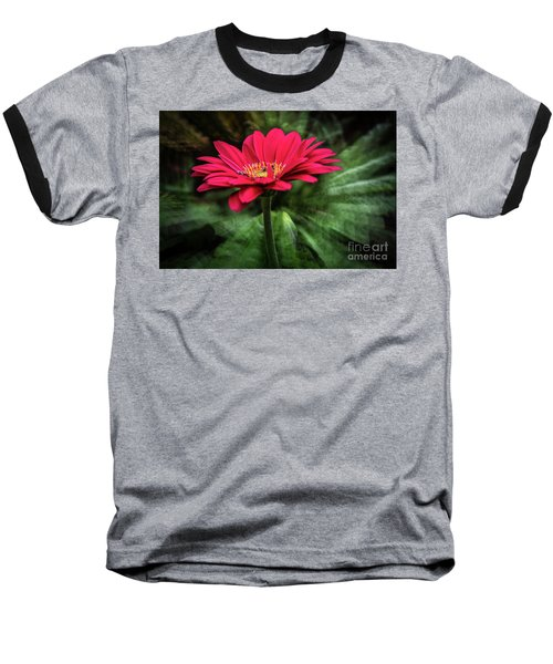 Spiral Pink Flower Focus Baseball T-Shirt