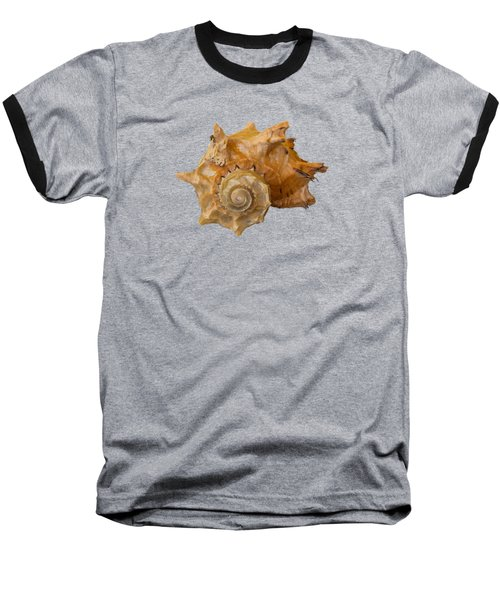 Spiral Shell Transparency Baseball T-Shirt