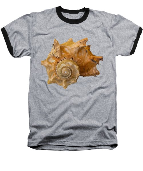 Spiral Shell Transparency Baseball T-Shirt