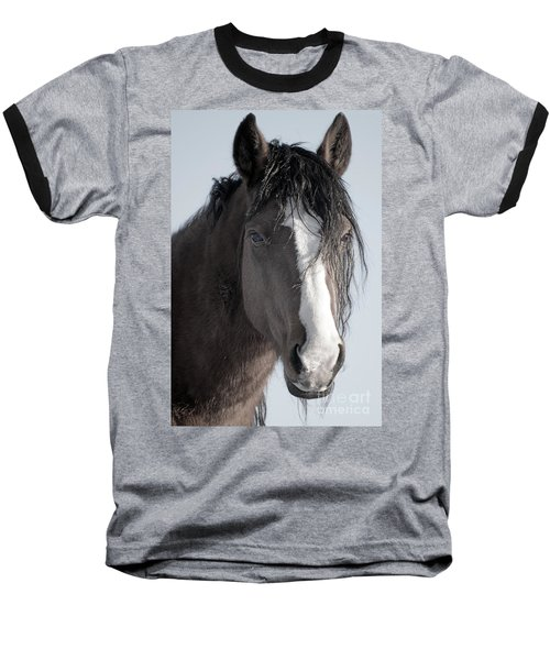 Spirit Horse Baseball T-Shirt