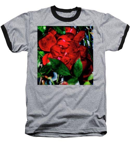 Spirit Of The Rose Baseball T-Shirt by Gina O'Brien