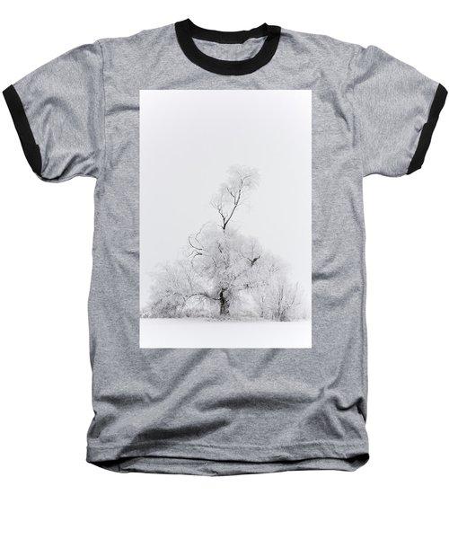 Spirit Tree Baseball T-Shirt by Dustin LeFevre