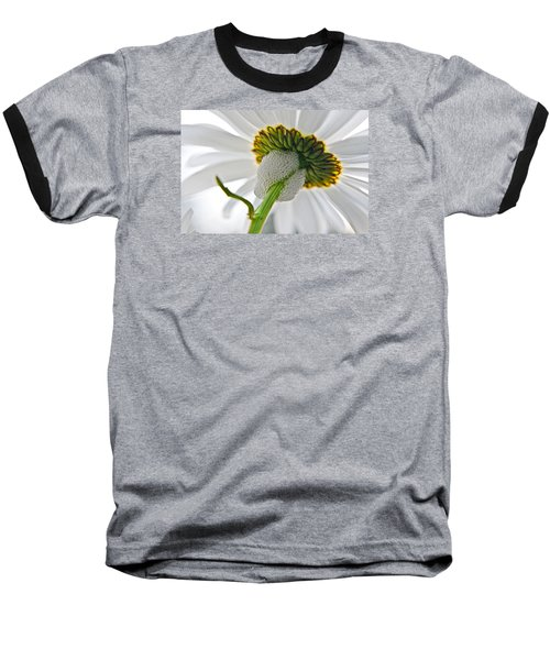Spittle Bug Umbrella Baseball T-Shirt
