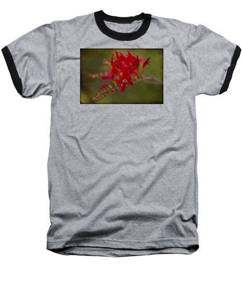 Splash Of Red. Baseball T-Shirt by Clare Bambers