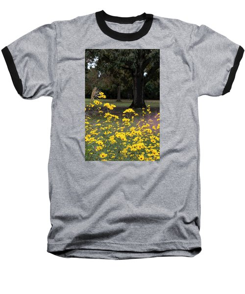 Splashes Of Yellow Baseball T-Shirt by Suzanne Gaff