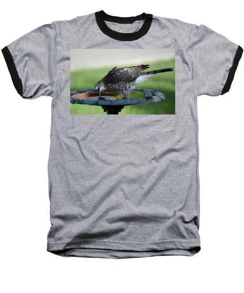 Water And The Hawk Baseball T-Shirt