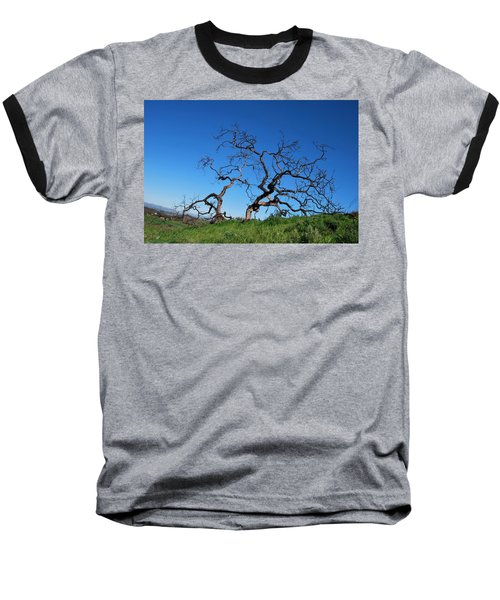 Split Single Tree On Hillside Baseball T-Shirt