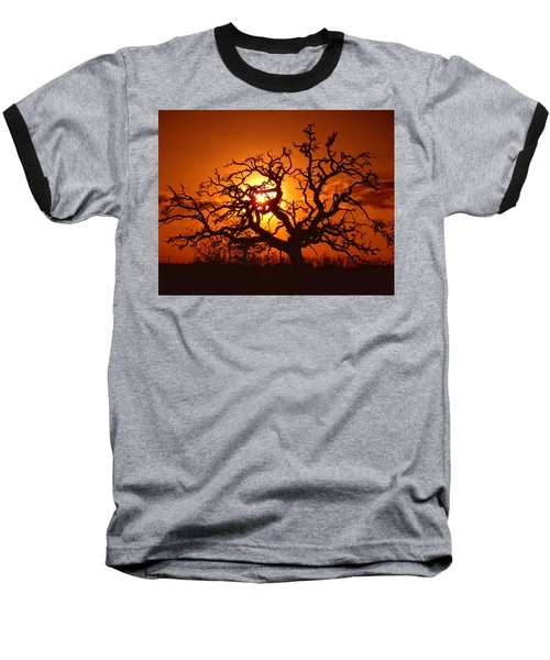 Spooky Tree Baseball T-Shirt by Stephen Anderson