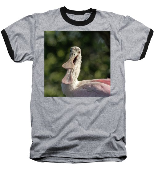Spoonbill Talk Baseball T-Shirt