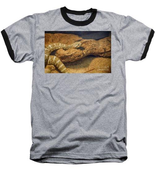 Spotted Rattlesnake   Blue Phase Baseball T-Shirt by Anne Rodkin