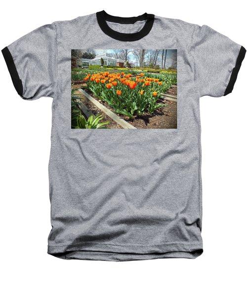 Spring 2014 Baseball T-Shirt