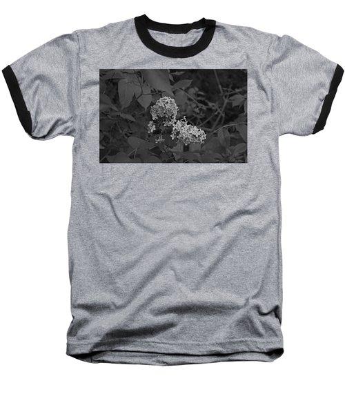 Spring 2016 16 Baseball T-Shirt by Cendrine Marrouat