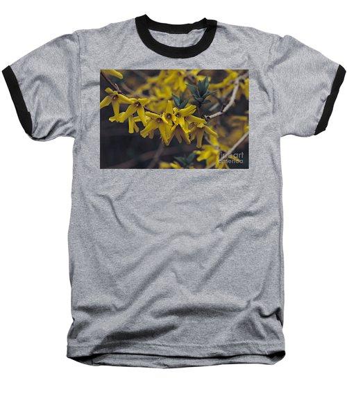 Spring 2016 8 Baseball T-Shirt by Cendrine Marrouat