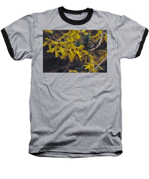 Baseball T-Shirt featuring the photograph Spring 2016 8 by Cendrine Marrouat