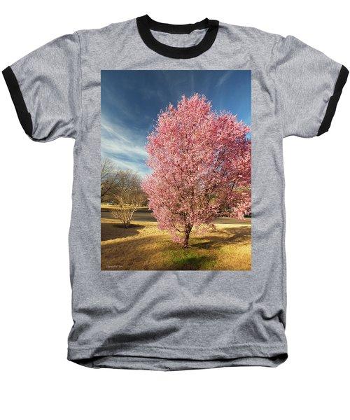 Spring 2017 Baseball T-Shirt