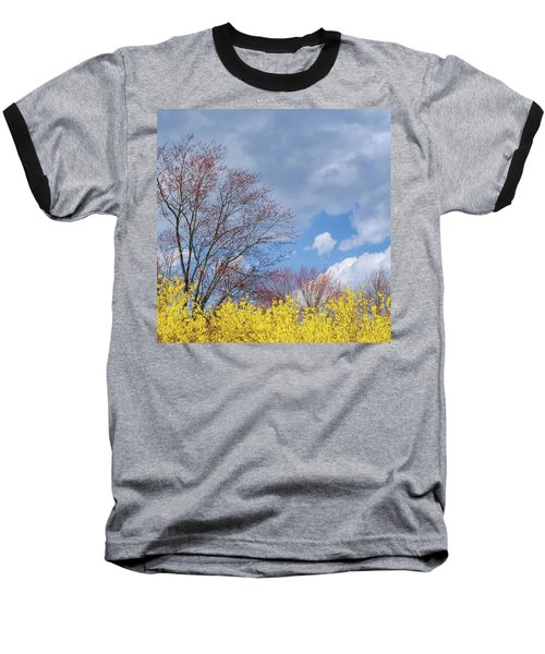 Baseball T-Shirt featuring the photograph Spring 2017 Square by Bill Wakeley