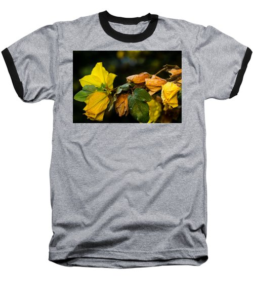 Spring Almost Gone Baseball T-Shirt