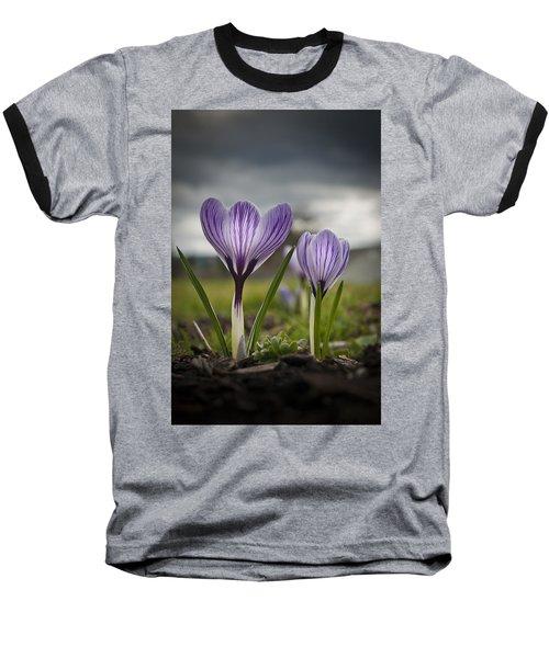 Spring Awakening Baseball T-Shirt
