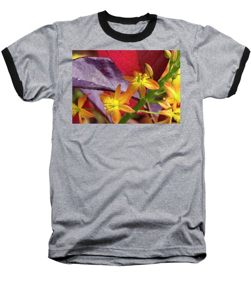 Spring Blossoms 2 Baseball T-Shirt by Stephen Anderson