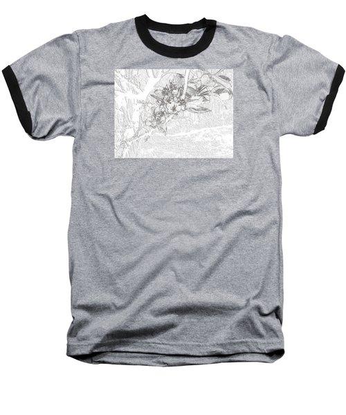 Spring Blossums Baseball T-Shirt by Craig Walters