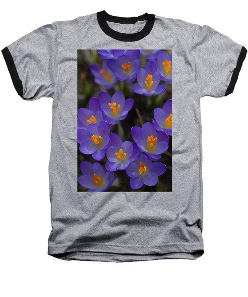 Spring Charmers Baseball T-Shirt by Tim Good