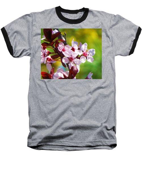 Spring Cheer Baseball T-Shirt