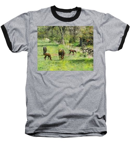 Spring Colts Baseball T-Shirt by John Robert Beck