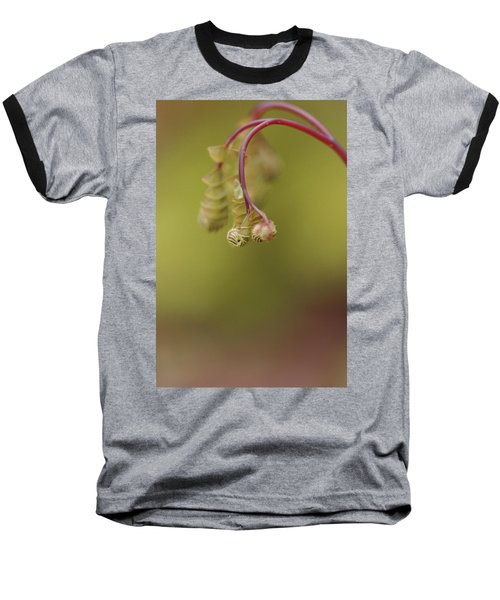 Baseball T-Shirt featuring the photograph Spring Coming 2017 by Jeff Burgess