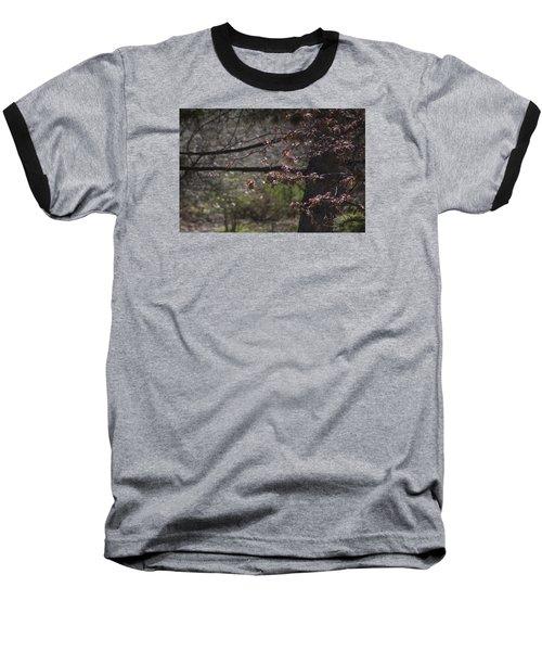 Spring Crabapple Baseball T-Shirt by Morris  McClung