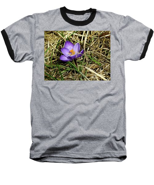 Spring Crocus Baseball T-Shirt