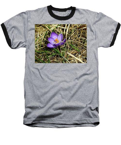 Spring Crocus Baseball T-Shirt