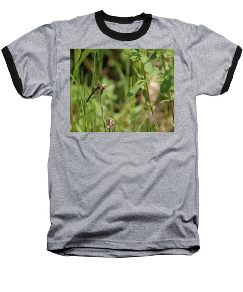 Baseball T-Shirt featuring the photograph Spring Dragonfly by LeeAnn McLaneGoetz McLaneGoetzStudioLLCcom
