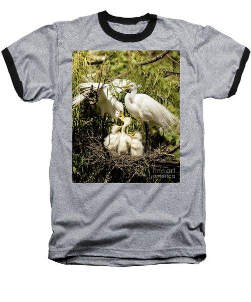 Spring Egret Chicks Baseball T-Shirt by Robert Frederick
