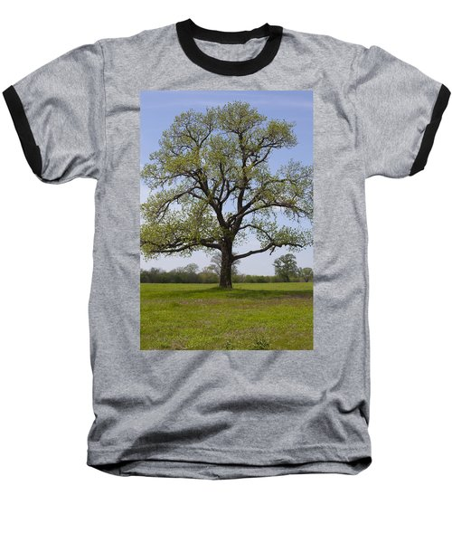 Spring Emerges Baseball T-Shirt