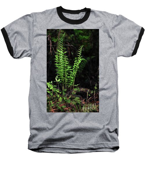 Baseball T-Shirt featuring the photograph Spring Ferns by Skip Willits