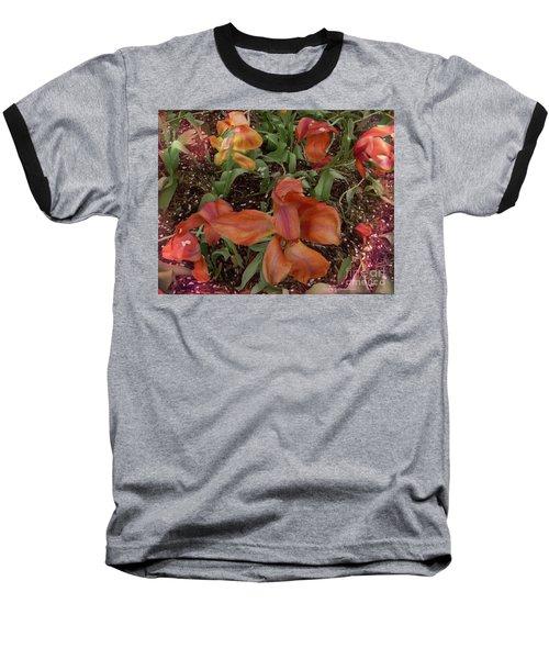 Spring Fever Baseball T-Shirt by Kathie Chicoine