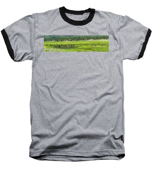 Spring Grazing Baseball T-Shirt
