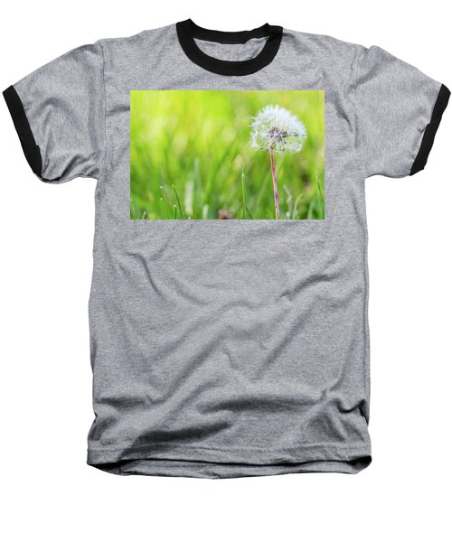 Spring Growth Baseball T-Shirt