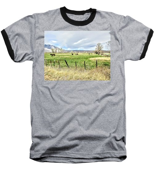 Spring In The Valley Baseball T-Shirt